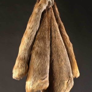 Beaver Fur Hide
