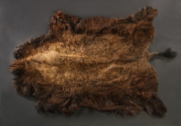 Buffalo Hide - Craft grade