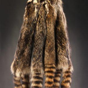 Raccoon Hide
