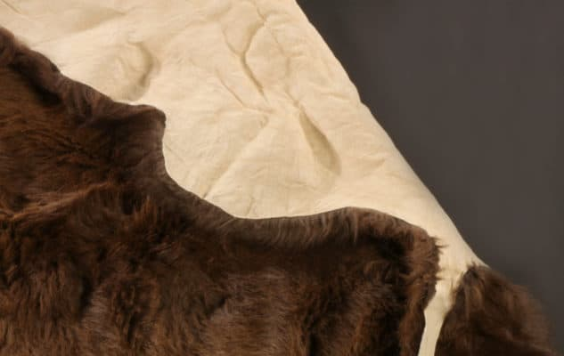 Soft leather side of a plush brown buffalo hide