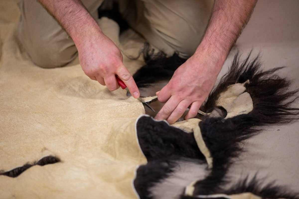 selecting-hides